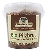 Bio Shiitake Pilzbrut Substratbrut, eigene Pilze auf Holz züchten