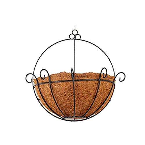 ZWD Schmiedeeisen Wandbehänge, natürliche Kokosnuss Palm Nachahmung Vogelnest Design...