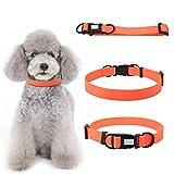 Nitrip Orange Hundehalsband, das in dunkle beleuchtete Halsbänder glüht Halten Sie Ihre Haustiere sichere Nachtsicherheitshalsbänder