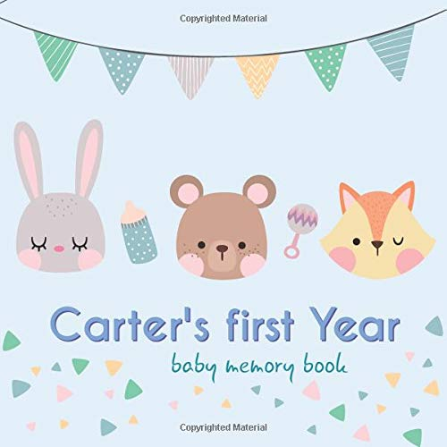 Carter's first year - Baby Memory Book: Baby Memory Book