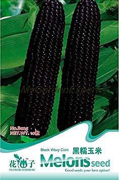 ASTONISH Erstaunen SEEDS: Heiße verkaufen10pcs y, Maissamen, Bonsai-Samen, Gemsesamen Original-Verpackung