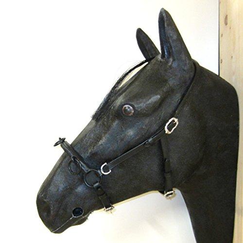 PS Pferdeartikel Französischer Kappzaum Cavecon/Cavesson mit D-Ringen SOFT - Gr. FULL Farbe Schwarz mit silbernem Beschlag