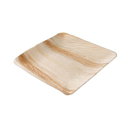Hochwertiges Palmblattgeschirr von kaufdichgrün | 25 Stück Palmblatt Teller rechteckig 25 x 25 cm | Bio Einweggeschirr biologisch abbaubar Partygeschirr Einmalgeschirr Wegwerfgeschirr