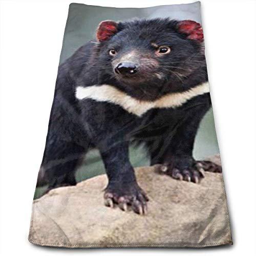 122 Purple Haze Tasmanian Devil Fishing Lure Tom/'s Taz Lures