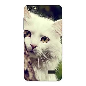 Cute Hiding Cat Multicolor Back Case Cover for Honor 4C