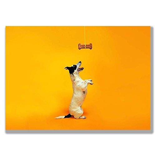 Box Prints Tierische Tierwelt Spaß Hundekuchen Knochen Leinwand Wand Kunstdruck Bild Klein groß -
