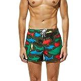 CixNy Herren Badeanzug Tankinis Sommer Badehose Für Männer Trocknen Schnell Strand Surfen Laufen Watershort Schwimmen Swimwear (Armeegrün, Large)
