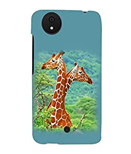 printtech Giraffe Jungle Couple Back Case Cover for Micromax Android A1::Micromax Canvas A1 AQ4502