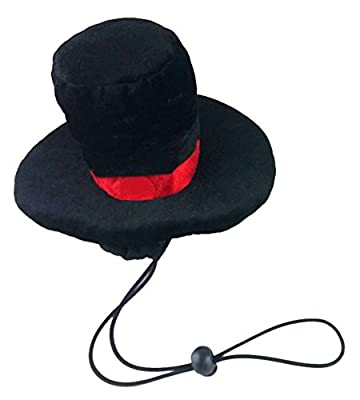 Kyjen Christmas LED Lit Dog Top Hat_P