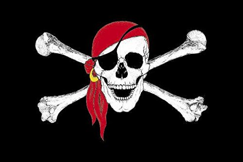 U24 Fahne Flagge Pirat mit rotem Kopftuch Bootsflagge Premiumqualität 20 x 30 cm