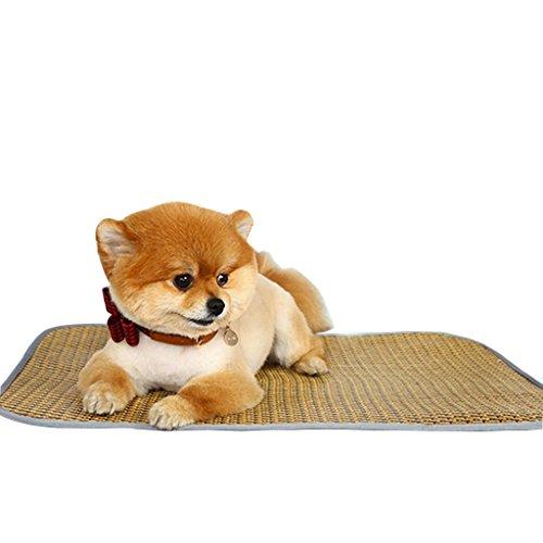 Sommer Hundematte Zwinger Verdicken pet matte Teddy Bucket Golden Retriever Husky Hund liefert