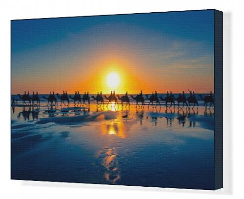 canvas-print-of-the-famous-camel-train-cable-beach-western-australia