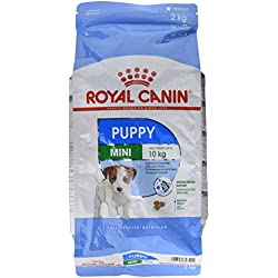 Royal Canin - Royal Canin Mini Puppy Contenances : 2 kg