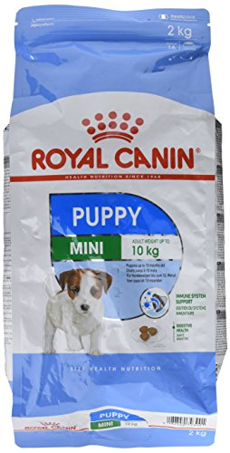Royal Canin Hundefutter Mini Junior 33, 2 kg, 1er Pack (1 x 2 kg)