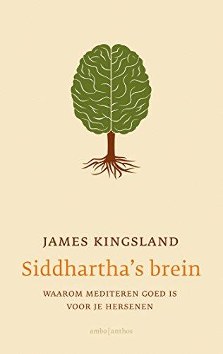 Siddhartha\'s brein: waarom mediteren goed is voor je hersenen