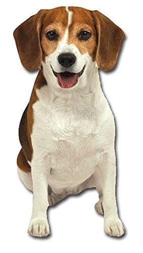 Preisvergleich Produktbild Beagle Blank Card Paper House Productions by Paper House Productions