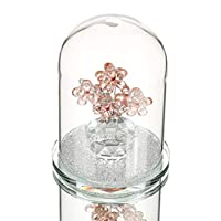ALILEO Crystal Flower Enchanted Rose In Terrarium Pendant Valentines Day Fairy Tale Crystal Gifts For Lover,C
