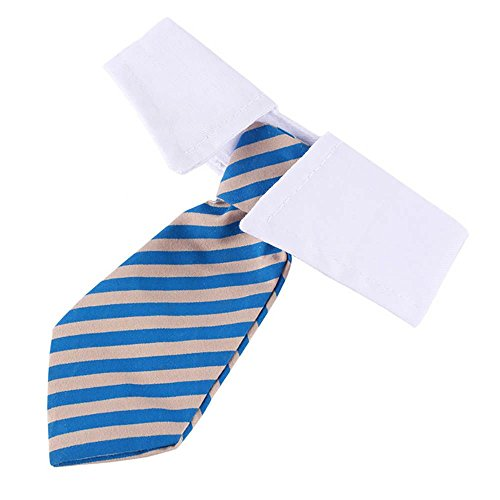 Collar raya corbata de perro