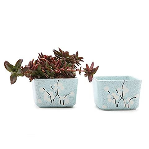 T4U 9CM Ceramic Japanese Stlye Square Wintersweet Sucuulent Plant Pot/Cactus Plant Pot Flower Pot/Container/Planter Blue Package 1 Pack of