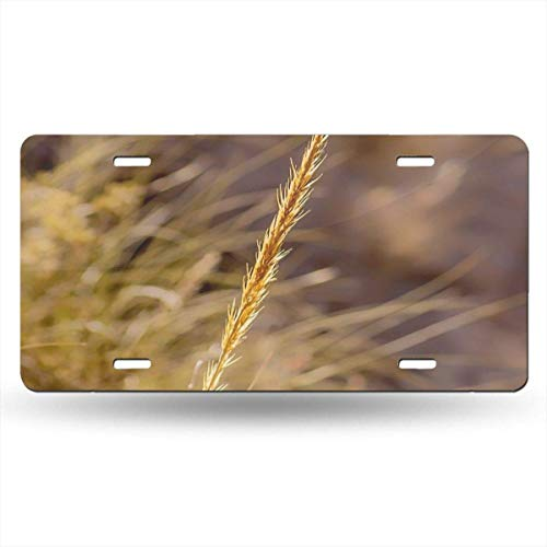 FunnyCustom License Plate Frame Wheat Personalized Aluminum Metal Tag Holder Waterproof 12 x 6 Inch Decoration