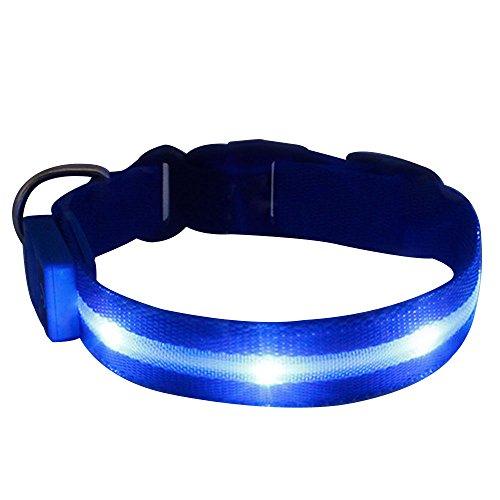 sijueam-led-pet-dog-collar-usb-rechargeable-night-safety-flashing-light-up-necklace-loop-puppy-illum