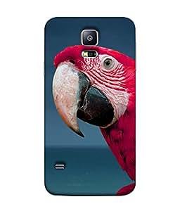 PrintVisa Designer Back Case Cover for Samsung Galaxy S5 :: Samsung Galaxy S5 G900I :: Samsung Galaxy S5 G900A G900F G900I G900M G900T G900W8 G900K (Cute parrot Red parrot)