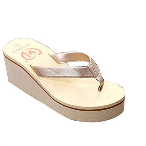 Familizo scarpe donne elegante la moda Donne Estate Calzature Infradito