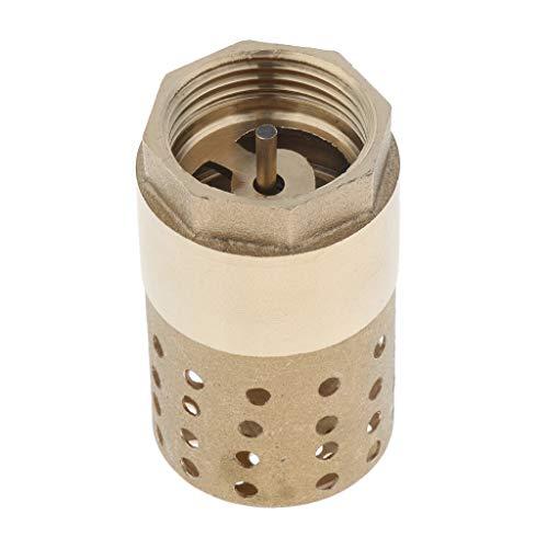 perfk DN25 Rückschlagventil aus Messing mit Siebfilter Fußventile für Wasserpumpe