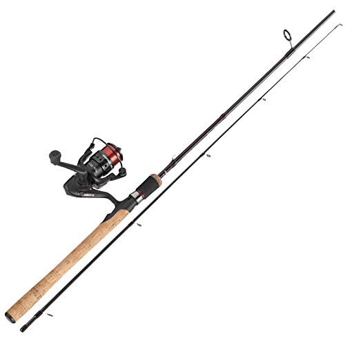 Fladen komplett Raubfisch & Friedfisch Angelset - 2,10m - Rute Rolle Schnur