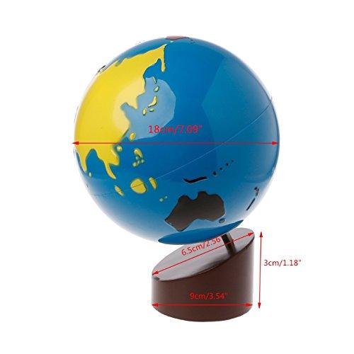 Kofun aprendizaje temprano juguete Montessori geograf¨ªa materiales globo de MUNDO piezas Multicolor