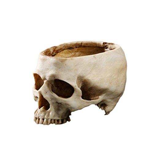 Pot de Fleur Crâne Humain Créatif Décoration pour Bar Maison Jard