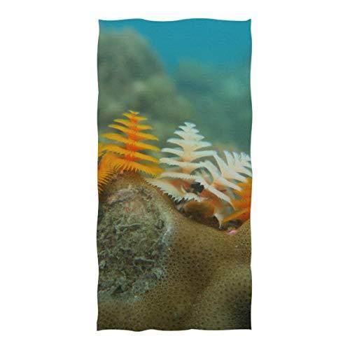 WOCNEMP Leichtes Strandtuch für die Reise Wilder Weihnachtsbaumwurm Cayman Island Reef Mikrofasertuch für die Reise Schwimmen Camping Yoga Sport 37 x 74 Zoll Stranddecke Mädchen
