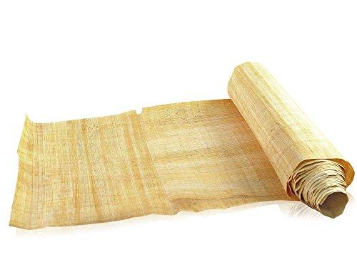 Papyrus Buchrolle 400cm - Plinius der Ältere secundus - Forum Traiani - Schriftrolle aus ägyptischem Papyrus - Antike Schriftrolle