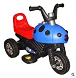 Lvbeis Kinder Elektro Motorrad 6 Volt Akku Motorcycle Kindermoped Kleinkinder Motocross