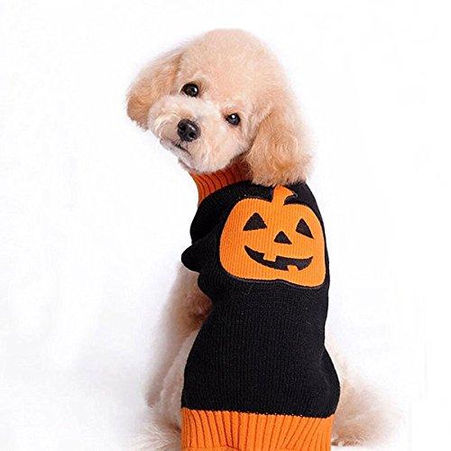 zoonpark® Kleine Hunde/Welpen Pullover Kleidung, Lovely Halloween Kürbis Pullover Hund Kleidung Winter Warm Weste T Shirt Puppy Kleidung Apparel für kleine medium Hunde