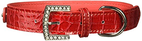 Mirage Pet Products 2-stufig Faux Croc Halsband, mittel, rot (Rot Faux Croc)