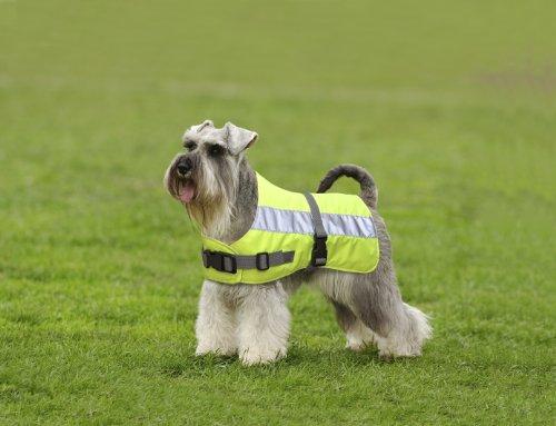 Petlife Warnweste für Hunde, mit warmem Thermofutter, 45,7cm, fluoreszierendes Gelb