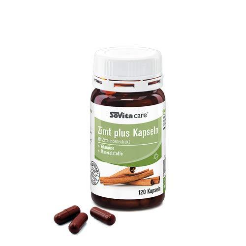 Zimt plus Kapseln | Vitamine & Mineralstoffe | mit Zimtrindenextrakt | 120 Kapseln