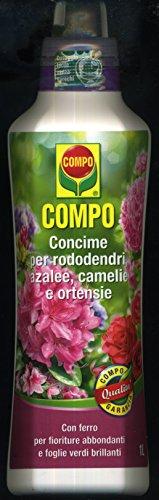 compo-concime-liquido-per-azaleerododendri-e-camelie-1-lt