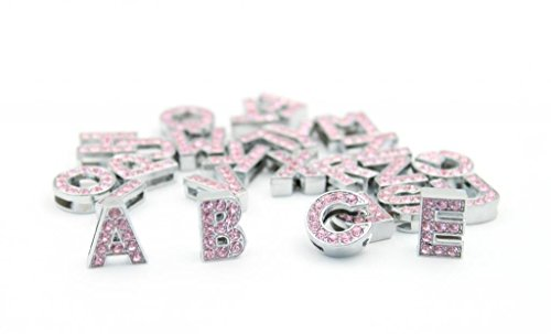 Pet Leso reg; Personalized Bling Pet Dog Collar with Rhinestone Buckle, Free Letter & Charm Silver L 1
