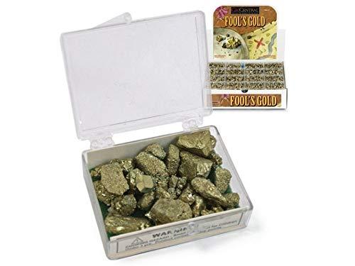 Pirite gold's rush scatolina