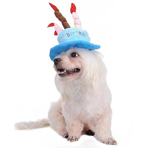 OULII Süße Katze Hund Cap Haustier Partyhut Geburtstagstorte und 5 bunten Kerzen Design Cosplay Kostüm (blau)