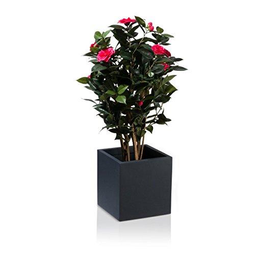 Pflanzkübel CUBO Fiberglas Pflanztopf - Farbe: anthrazit matt - robuster, UV-beständiger, wetterfester & frostsicherer Blumentopf für den Garten, Innen- & Außenbereiche Blumenkübel