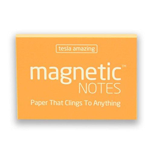 (Magnet Experten ta200100su (100) Tesla Amazing magnetisch Note, Sunshine)