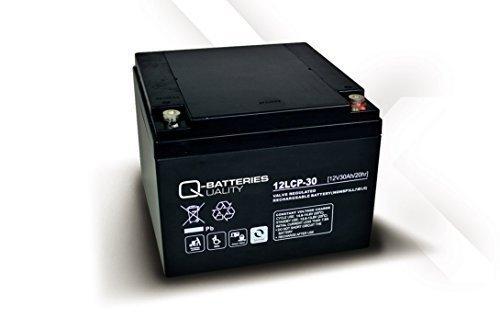 Solarbatterie Akku Quality- Batteries 12LCP-30 / 12V - 30Ah AGM-Deep Cycle