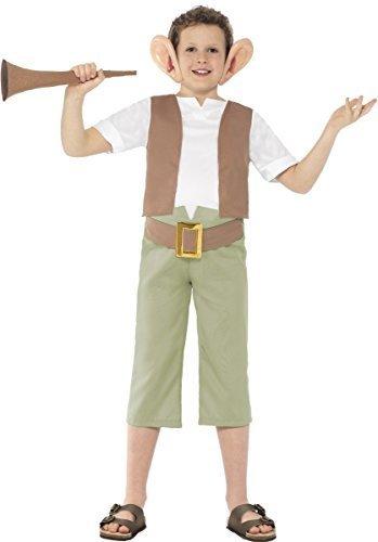 d Dahl BFG groß freundlich Riese Ungeheuer Monster Troll büchertag Charakter Kostüm Kleid Outfit - Mehrfarbig, 12-14 Years (Herren Troll Kostüm)