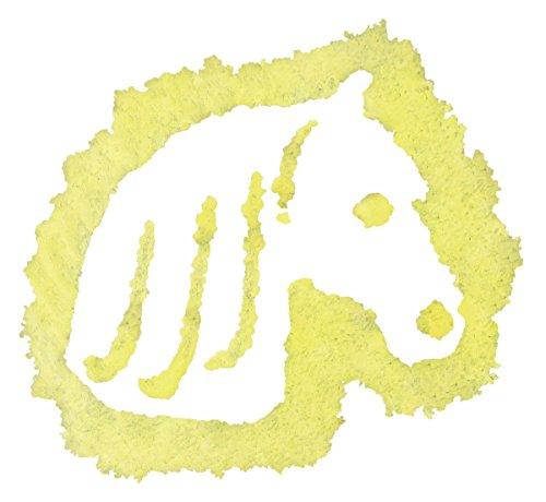Ravensburger Outdoor Malspaß 290895 - Pferd hergestellt von Ravensburger