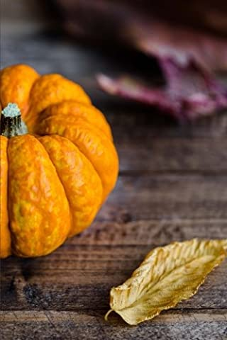 An Orange Pumpkin and Autumn Leaves Harvest Journal: 150 Page