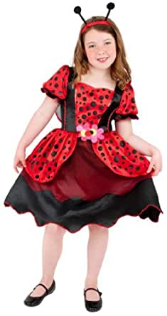 Little Lady Bug Dress Wings and headband - Small