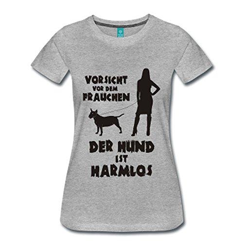 Terrier: Vorsicht vor dem Frauchen – der HUND ist HARMLOS Grau Meliert